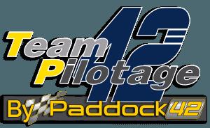 Team pilotage