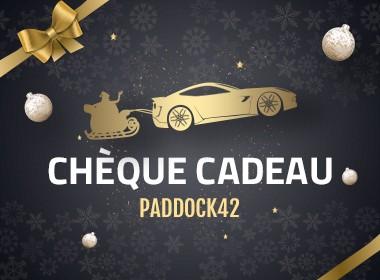 cheque-cadeau-team-pilotage-42